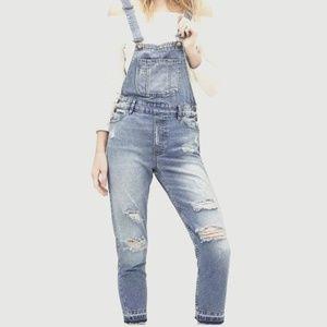 Zara Basic Distress Denim Overalls